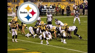 Pittsburg Steelers Dog Gear
