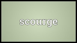 Scourge Meaning
