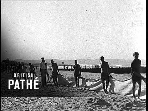 Reclaiming The Beach At Durban (1937)