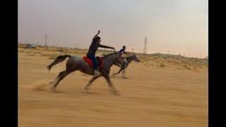 (الكنتر + الركابات وثباتها) طلعتنا لـ شعيب محمد وردة فعل البادية وفتح مع عبدالله القباني