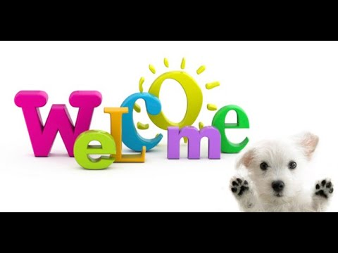Welcome video by Pet cutties