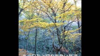葛尾川(合唱)