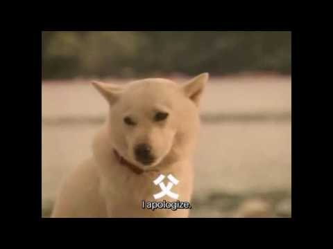 SoftBank Dog (Otou-san|White Family) Japanese Commercials Compilation #02 (Ep #33-51.) [Eng sub]