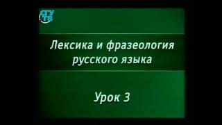 Русский язык. Урок 3. Понятие о лексической омонимии. Использование омонимов в литературе. Паронимия