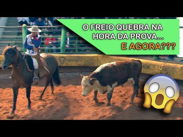 FREIO QUEBRA e mesmo assim, CAVALO dá SHOW!