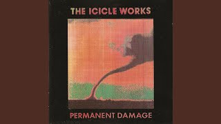 Watch Icicle Works Baby Dont Burn video