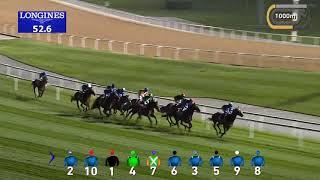 Vidéo de la course PMU JEBEL HATTA