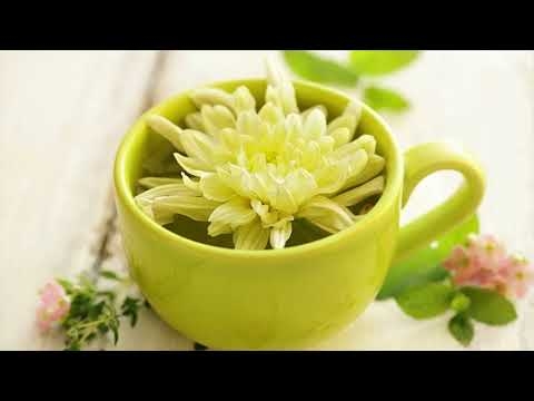 Get Higher Energy Levels With Black Tea- Weight Loss Possible With Black Tea - How