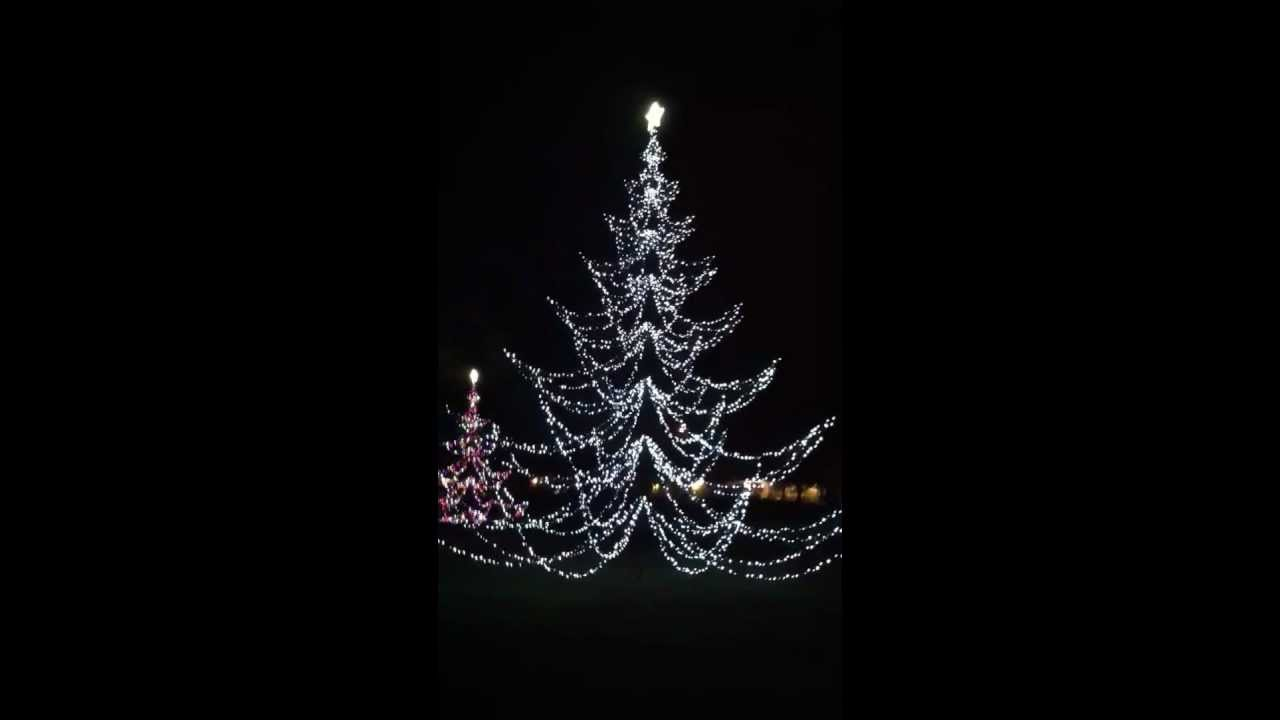commercial christmas trees holiday lighting services tampa lakeland 813 352 0209