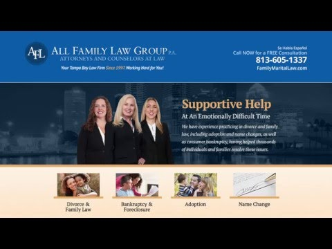 Tampa Divorce Attorney | Family Attorney Tampa FL | What is unbundled or limited representation?