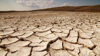 Быстро высыхает земля в цветочном горшке? Причины пересыхание почвы и их устранение.