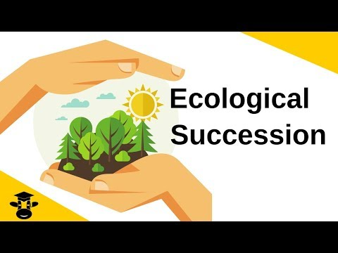 Ecological Succession-Primary and Secondary from YouTube · Duration:  3 minutes