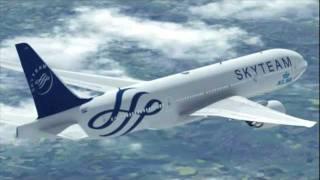 Самолеты, Стюардессы и Пилоты SkyTeam