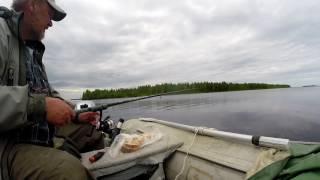 о пользе сала на рыбалке  movie