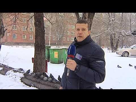 Киселевск. Теплотрасса в снегу