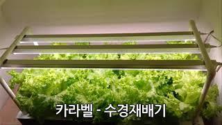 수경 재배기 LED 스마트팜 식물 새싹 키우기 재배 상…