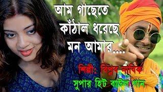 আম গাছেতে কাঁঠাল ধরেছে ও মনরে|নতুন বাংলা বাউল গান|Am Gachete Kathal Dhoreche O Monore|Biplab Nabik