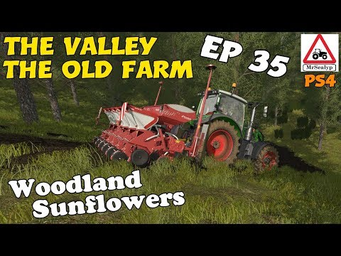 Let's Play Farming Simulator 17 PS4: The Valley The Old Farm, Ep 35 (Woodland Sunflowers!)