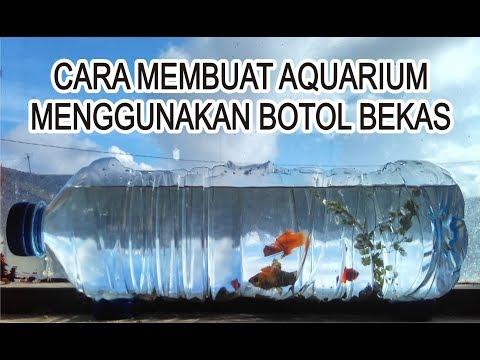 Cara Membuat Aquarium Ikan Cupang Dari Barang Bekas