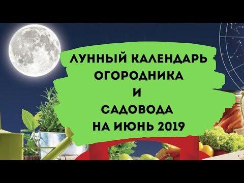 Лунный календарь огородника и садовода на июнь 2019