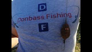 Рыбалка на амура летом, почему не клюет? когда не клюет? что не клюет?
