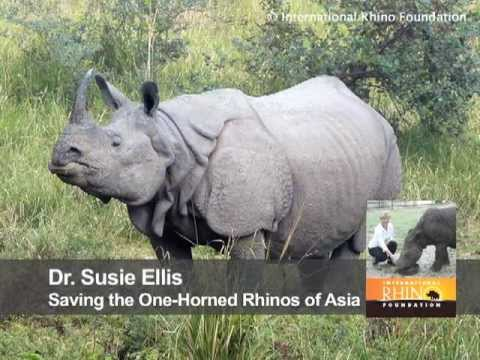 Saving the One-Horned Rhinos of Asia: Behind the Schemes, Episode 14
