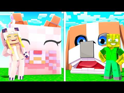 KATZE HAUS vs. HUND HAUS! ✿ Minecraft [Deutsch/HD]