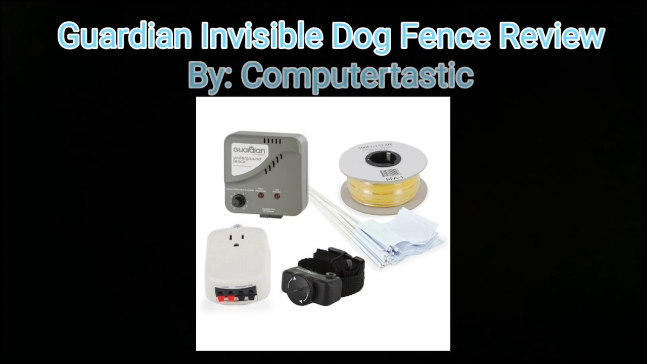 Guardian Invisible Dog Fence Review - YouTube