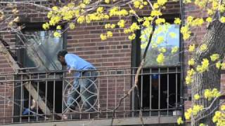 Jumper rescued in Ditmas Park