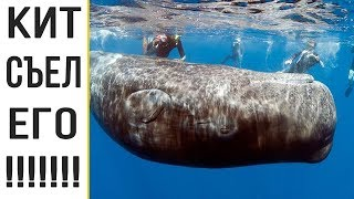ЧЕЛОВЕК ВЫЖИЛ после того как его проглотил кит! Джеймс Бартли