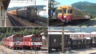 大井川鉄道 (留置線などで見かけた車両)