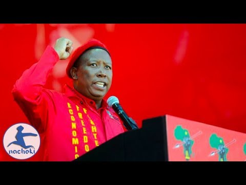 Julius Malema's We