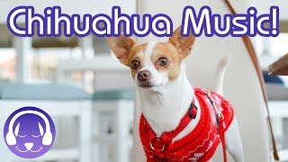 Music for Chihuahuas! Calming Music to Relax Your Chihuahua Dog!