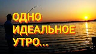 Нижняя Волга тур. Сом на квок. Рыбалка в Астрахани, это нечто!