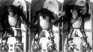 Cirque Royal - MNKY FRNT