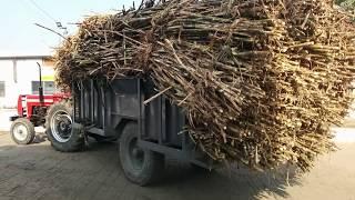 दौराला शुगर मिल  किसानों के लिए sabse acchi  फैक्ट्री है
