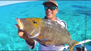2 days Tropical Reef Fishing Eat what you Catch EP.494