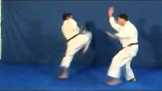 Karate - Técnicas de Defesa pessoal thumbnail