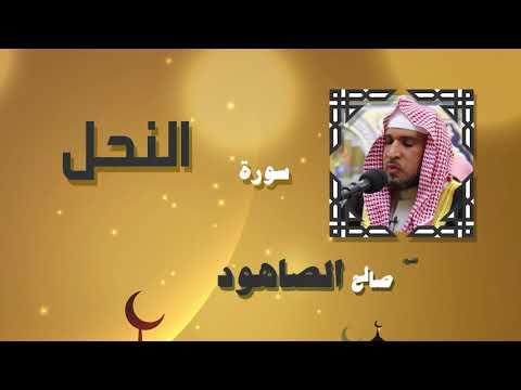 القران الكريم بصوت الشيخ صالح الصاهود | سورة النحل