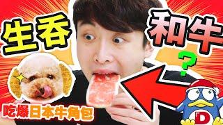 【小狗也瘋狂】在DONKI買了能生吃的和牛🥩?一次過吃盡東京、大阪、神戶的「特色牛角包🥐」!(中字)