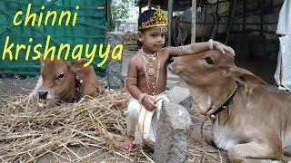 krishnastami special vlog  kannayya vlog