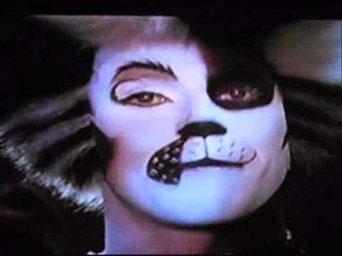 She's A Lady-CATS