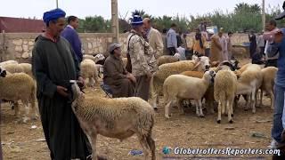 Le grand marche de Inezgane au Maroc