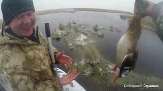 Закрыли охоту  по утке в Сибири.  Ремонт МР-153