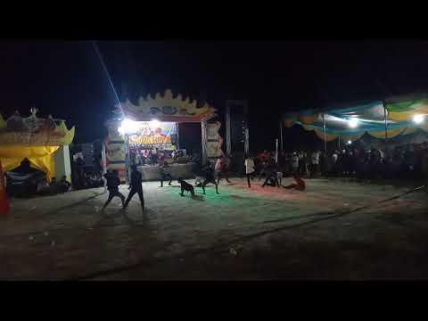 Jaranan Turonggo Bayu Saputro Palas Lampung Selatan