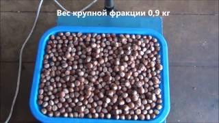 Тест станка для переработки фундука, арахиса, семечки, шиповника, кедрового ореха и пр  cut