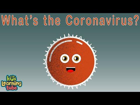 CORONAVIRUS   What Is Coronavirus?   Coronavirus Outbreak  Kids Learning Tube For Kids