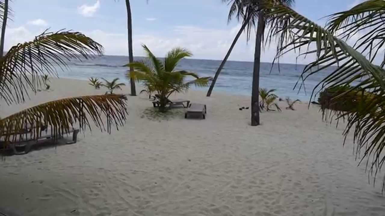 malediven kuredu island resort tauchen und strand urlaub