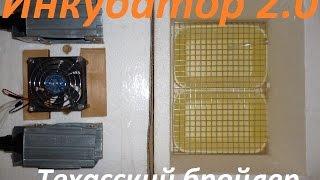 Инкубатор 2.0 своими руками Перепела Техасский бройлер