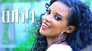 Ethiopian Traditional Music : Tesfaye Adugna - Weleba